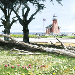 Lighthouse Field