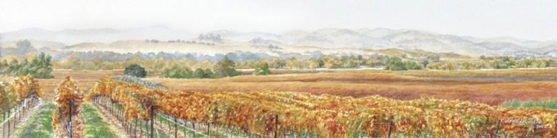 Olivera Vineyards Watercolor Art