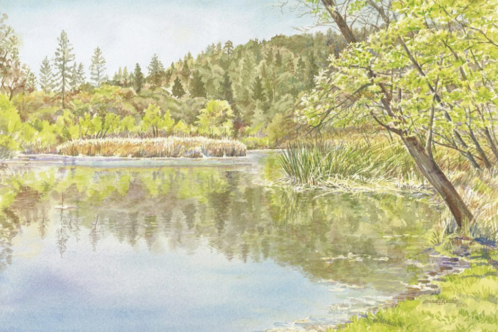 The Pond | Quail Hollow Ranch